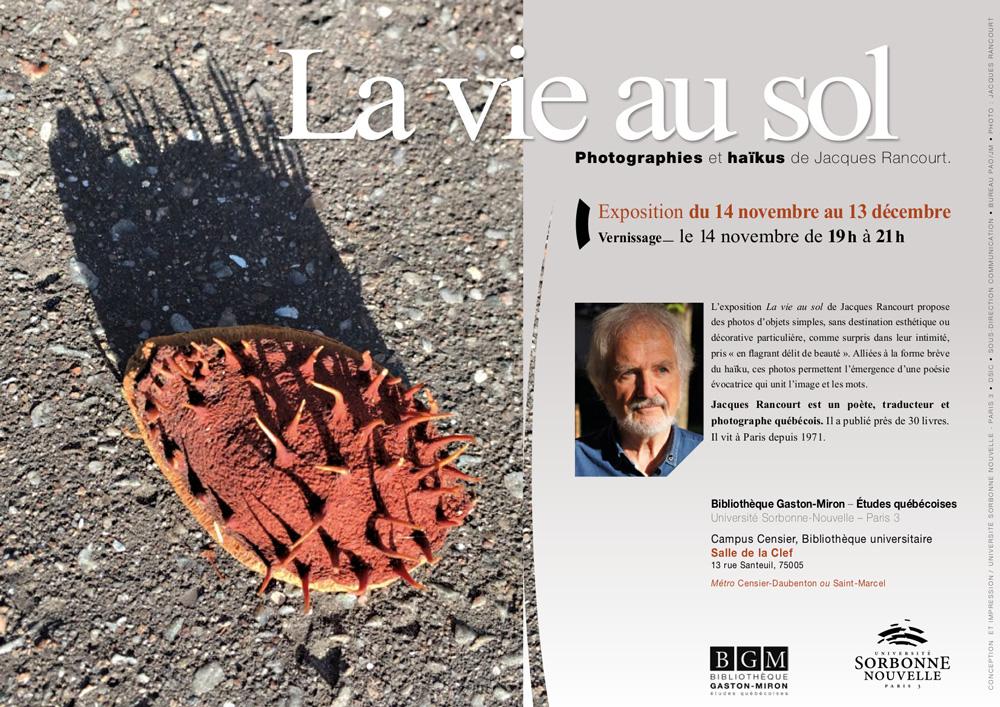 Affiche---La-vie-au-sol,-Photographies-et-haïkus---PR2.jpg