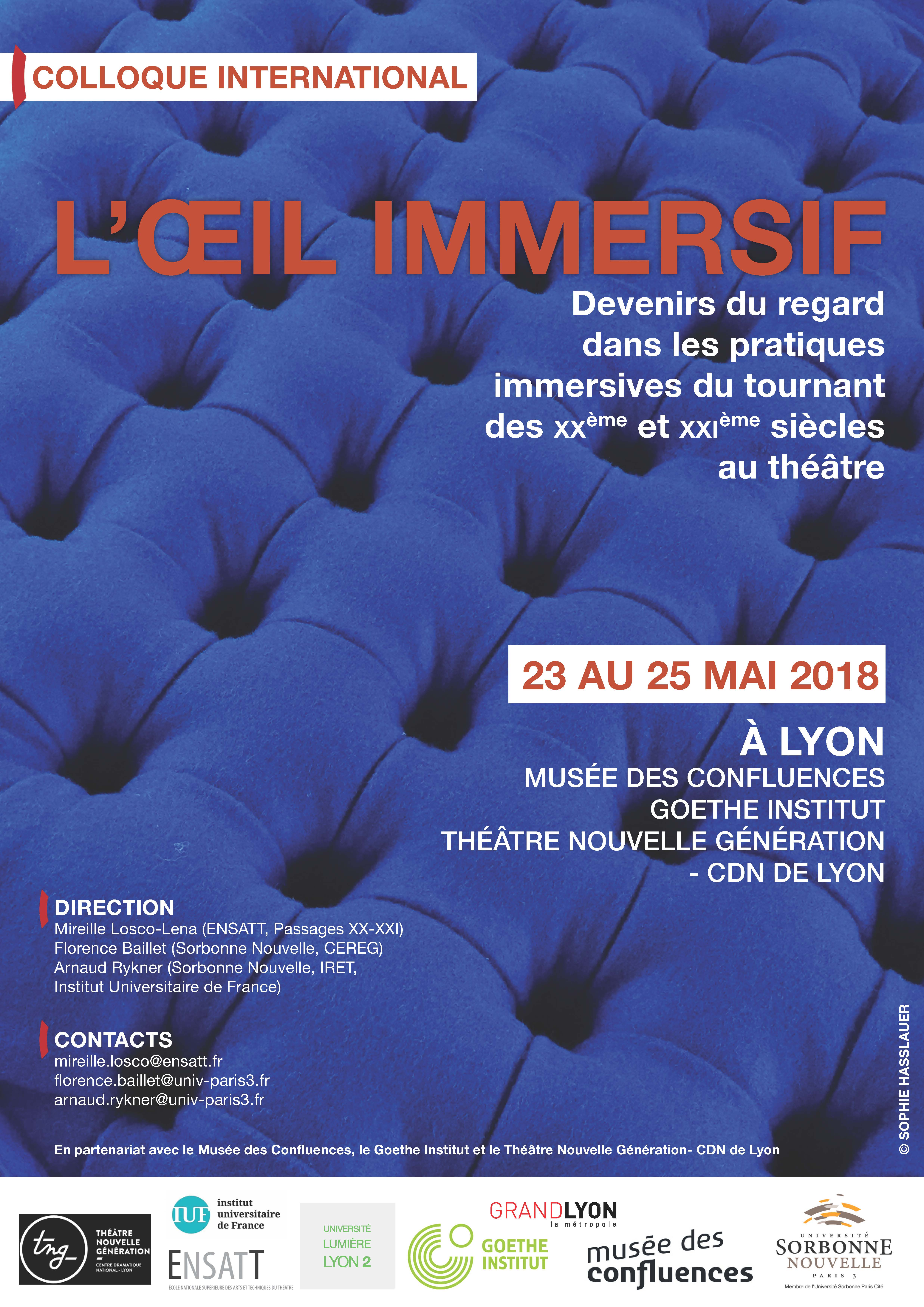 oeil immersif- affiche définitive.jpg