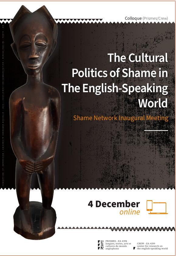 the cultural politics of shame